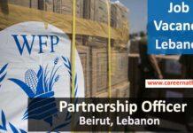 Partnership Officer Job